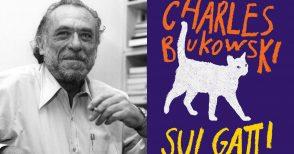 Cinici, indipendenti, ribelli: i gatti secondo Bukowski