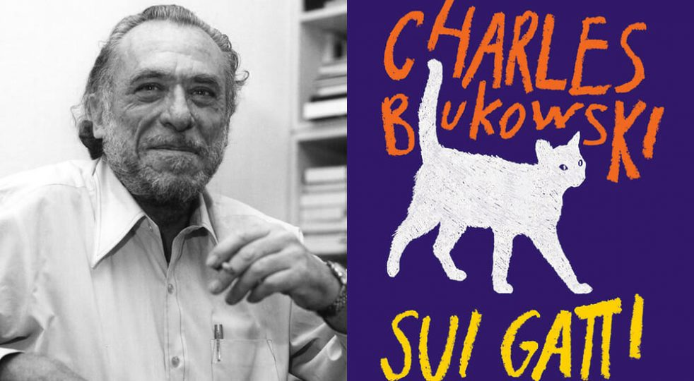 Bukowski-gatti